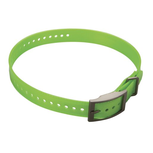 Collar strap for DC50 Green