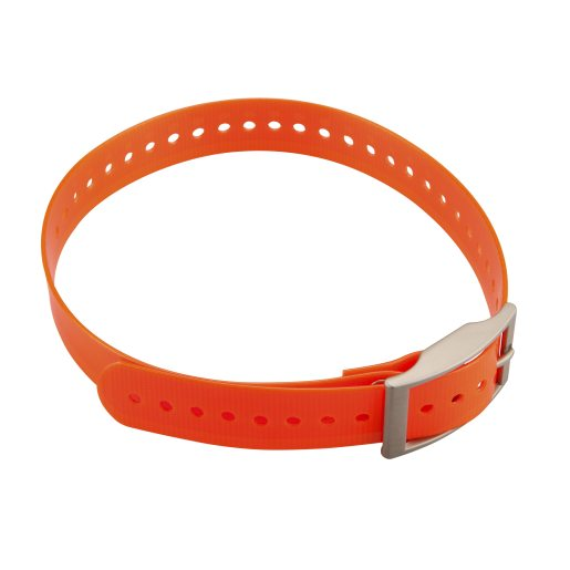 Collar strap for DC50 Orange/Small