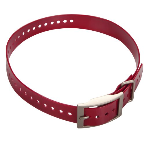 Collar strap for DC50 Red