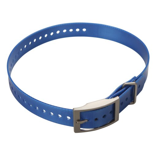 Collar strap for DC50 Blue