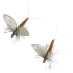 J:son Flies 2-pack Myfly Dun 3 Cinnamon Brown
