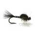 Hatching midge sort/går mygg 16