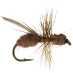 Flying ant cinnamon maur tørr