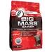 Big Mass Gainer 1kg