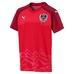 Austria Home Replica Shirt 17/18, fotbollströja junior