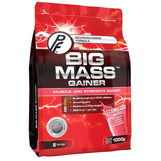 Big Mass Gainer 1kg