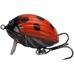 Lil' Bug 3cm, 4,3g Floating, BG3F, WSP LB